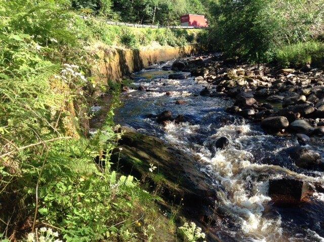Flod Geobear
